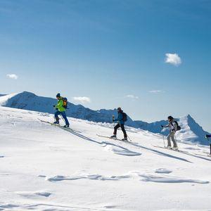 Nouvelles aventures nordiques 2019/2020 (Gilles Baron)