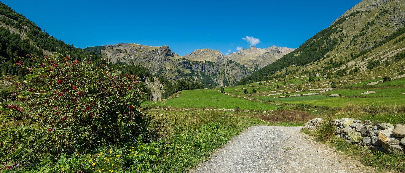 Plateau de Charnière - © Gilles Baron