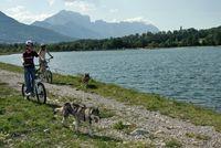 Cani-Trot' - Alpi Traineau - © François BOUSSIQUET